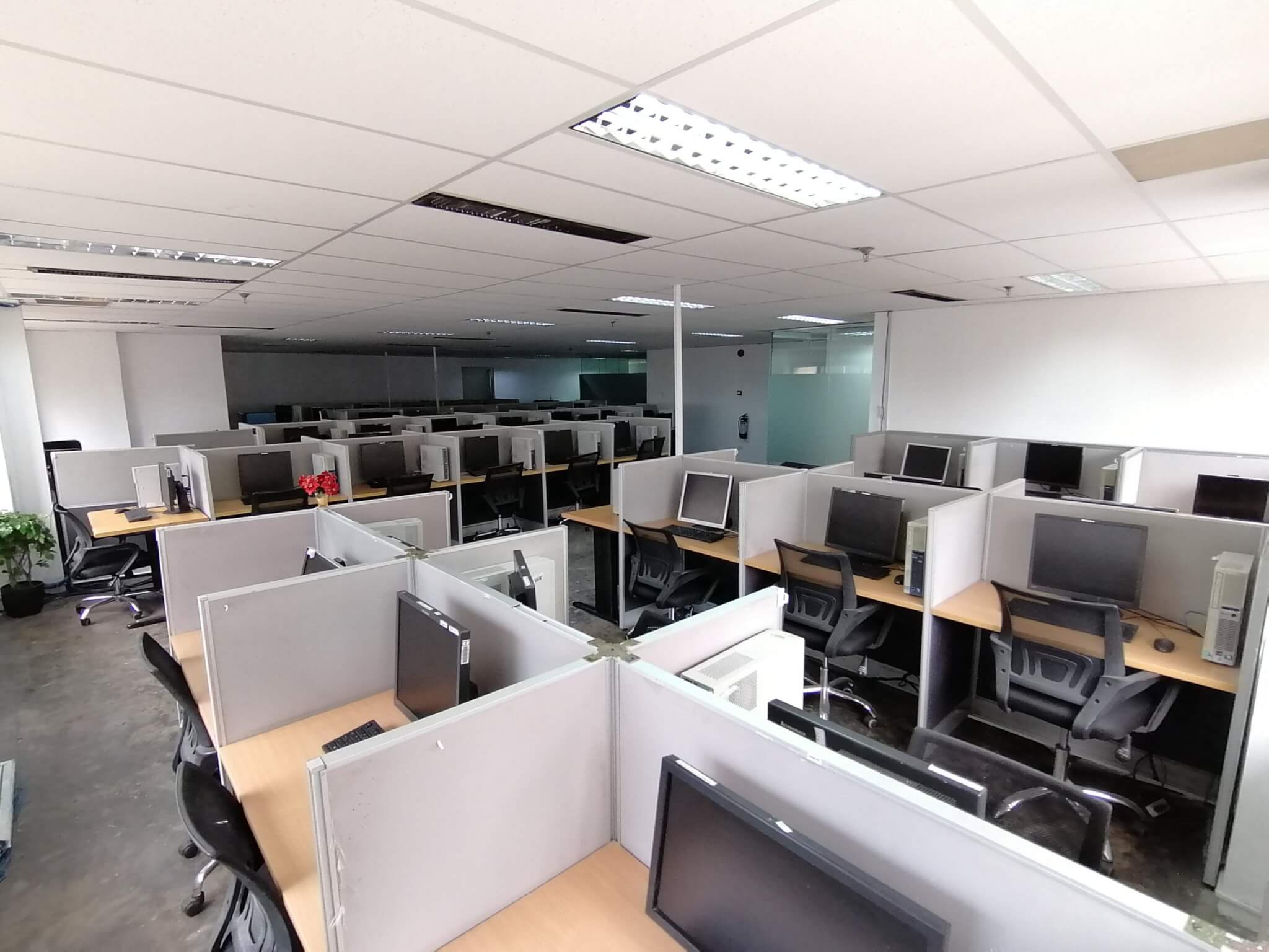 BPO sector expected to fare better this year
